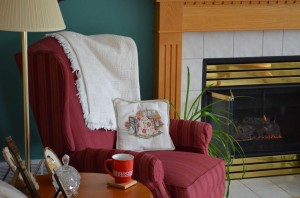 home, hearth, fire, chair, reading
